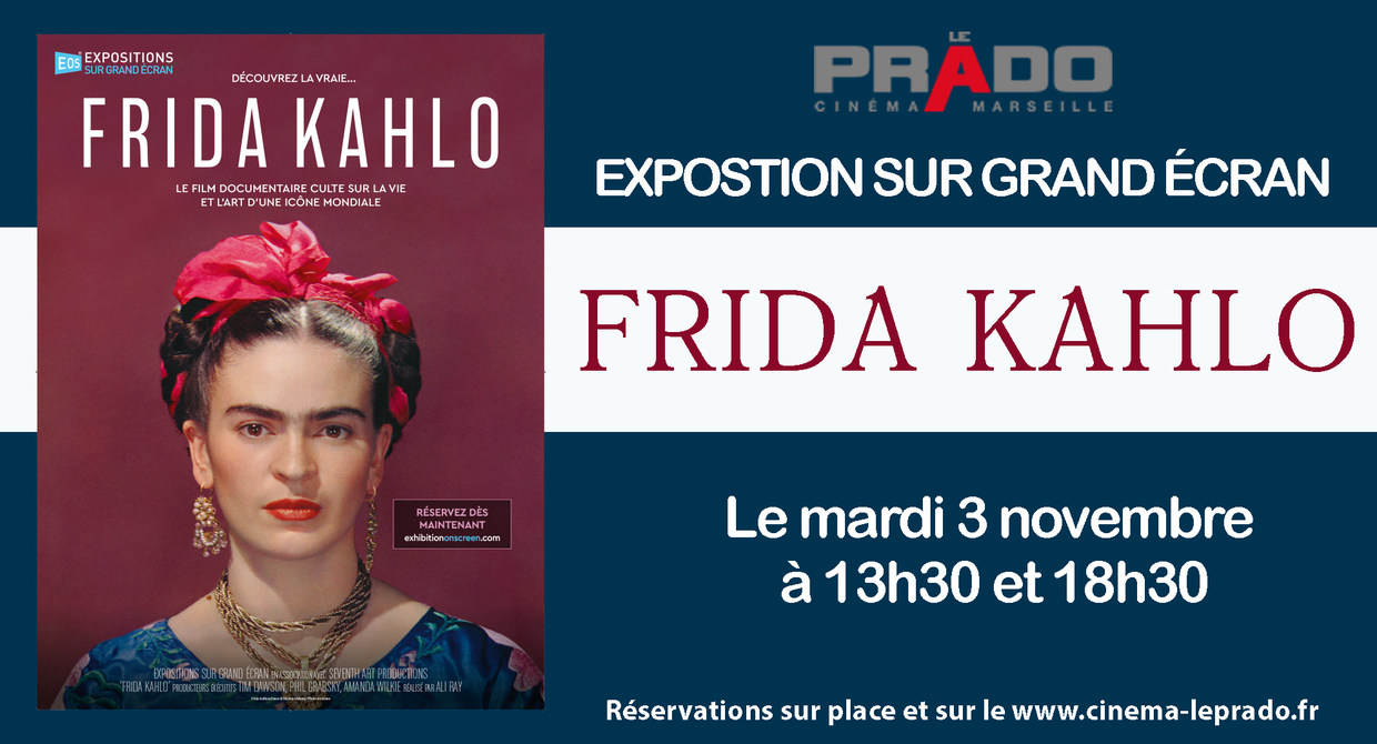 Photo du film Exhibition On Screen: Frida Kahlo